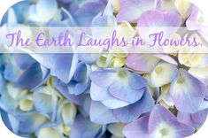 The Earth laughs in flowers → http://www.embracinghome.com/earth-laughs-in-flowers/