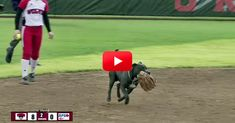 A Dog Runs On The Field And Disrupts This Game In The Funniest Way Possible! | The Animal Rescue Site Blog