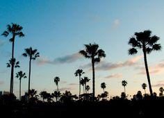 PHOTOGRAPHY   Los Angeles Sunset x Terry Richardson