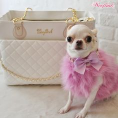 WOOFLINK - Hip designer dog clothes: CHIC BAG 3 WHITE ♥
