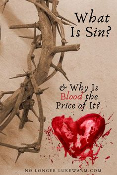 The Bible says that without the shedding of blood, there will be no remission of sin. What is sin, and why is the price of it blood?