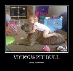 pitbulls were called nanny dogs for a reason.  they LOVE kids, and will let them do pretty much anything to them.