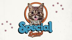 Lil Bub's Special Special - Opening Titles on Vimeo