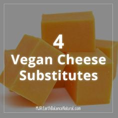 4 Vegan Cheese Substitutes for your plant based cooking