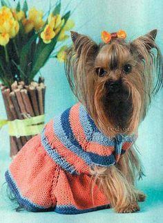 платье в полоску для собачки