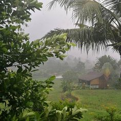 #WinterIsComing  #MyLifeInBali #LOVEtherain