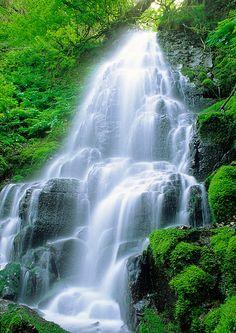 Fairy Falls - waterfall in Columbia River Gorge, Oregon