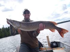 Seasonal patterns, habitat preferences, tackle selection — understanding these basics will help you connect with more pike over the course of a season. While pike fishing isn't an exact…