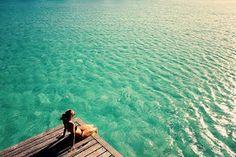 Relaxing,  blue, green,  ocean, beach, cool, calm