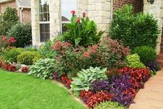 Add some good front yard plants with color, height, and texture that pleases the eye. There are several choices of front yard plants. Outdoor Landscaping, Front Yard Landscaping, Outdoor Gardens, Landscaping Ideas, Ranch House Landscaping, Acreage Landscaping, Landscaping Software, Canna Lily Landscaping, Houston Landscaping