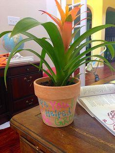 Plants Easy Teacher Gifts, Planter Pots