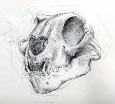 Resultado de imagen de skull drawings