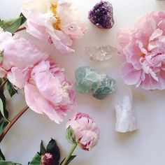crystals and flowers go together like yin and yang - ephemeral and eternal. photo by @saralight.