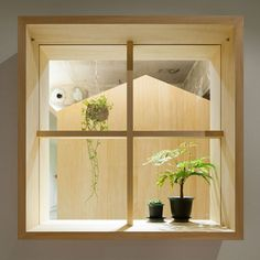 Office interior by Tsubasa Iwahashi brings the outside in with hanging baskets and a shed