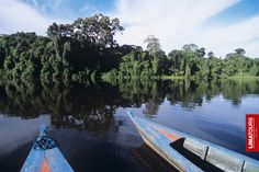 Contemplating the beauty of nature in Lake Sandoval, in the #Amazon basin. Madre de Dios - #Peru.