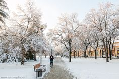 Kiskunhalas, winter, snow, town square, path, white, canon,cold, by Ramona Rekasi