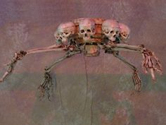 Details about Skeleton Ceiling Fan, Halloween Prop, Human Skulls NEW Unique Ceiling Fans, Gothic Furniture, Halloween Prop, Sugar Skulls, Old And New, Skeleton, Creepy, Diy And Crafts, House Ideas