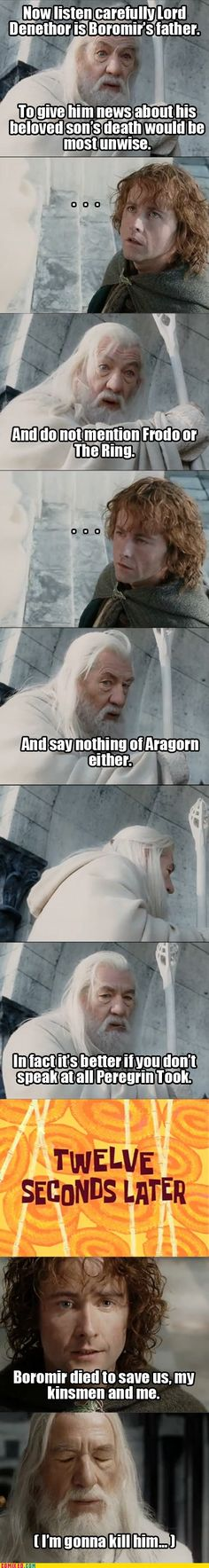 "Gandalf was probably thinking ""Fool of a Took!""."