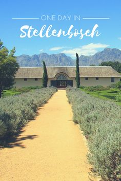 What would you do with one day in Stellenbosch? We suggest a few of our favourite things to do in this wineland town.
