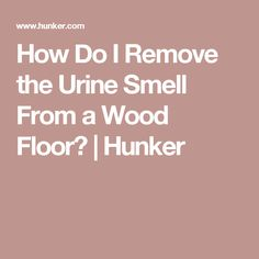 How Do I Remove the Urine Smell From a Wood Floor? | Hunker Natural Cleaning Solutions, Natural Cleaning Products, Household Products, Dog Urine, Pet Odors, Cleaning Recipes, Cleaning Hacks, Best Floor Cleaner, Urine Stains