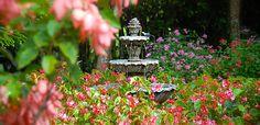 Boquete Garden Inn | Boquete Panama Hotel
