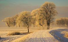 Zimski pejzaži - Page 31