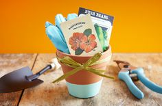This is a cheap easy way to spruce up an ordinary clay pot. The possibilities are endless to let your creativity pour. Also make really cute gifts.