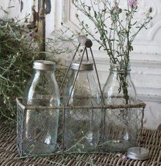 Our selection of metal milk bottle carriers features antique-style milk bottle carriers made with metal and wire mesh to add a rustic look to your interior setting. Most bottle carriers include sets of old-fashioned decorative milk glass bottles. Old Milk Bottles, Vintage Milk Bottles, Bottles And Jars, Glass Bottles, Milk Jars, Mason Jars, Bottle Vase, Perfume Bottles, Vintage Farmhouse