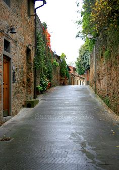 Original Photography Tuscan Countryside Vinci by wheninflorence