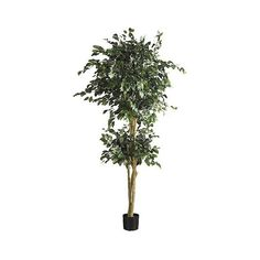 Nearly Natural 6' Double Ball Ficus Silk Tree ($113) ❤ liked on Polyvore featuring home, home decor, floral decor, green, silk flowers, green silk flowers, artificial silk trees, artificial trees and silk flower arrangement