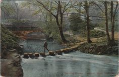 Newcastle, Jesmond Dene, Stepping Stones, c.1905.