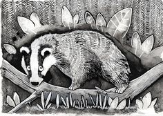 badger by AimeeLockwood on Etsy