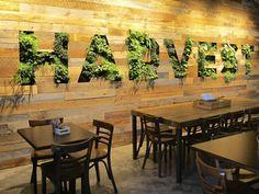 facebook- harvest cafe- living wall, habitat horticulture - Habitat Horticulture