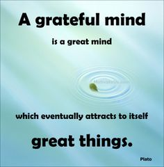 Gratitude Quotes / Motivational Quotes / Law of Attraction / Plato Quotes Motivational Quotes For Life, Great Quotes, Quotes To Live By, Positive Quotes, Inspirational Quotes, Plato Quotes, Words Quotes, Wise Words, Me Quotes