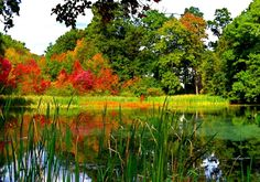 lago entre dos temporadas