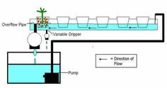 hydroponics nft system plans - Google Search