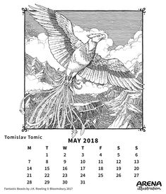 Arena May Calendar illustrated by Tomislav Tomic from Fantastic Beasts by J. Calendar 2018, Bloomsbury, Fantastic Beasts, Illustrators, Image, Illustrator, Illustrations