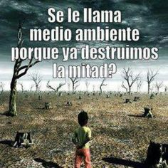 SE LE LLAMA MEDIO AMBIENTE... Ap Spanish, Spanish Memes, Sun Projects, Green Marketing, Spanish Posters, Environmental Engineering, Little Bit, Animal Quotes, Save The Planet