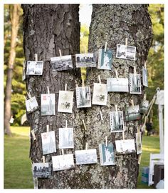 10 Creative Wedding Guest Book Ideas - Upcycled Treasures