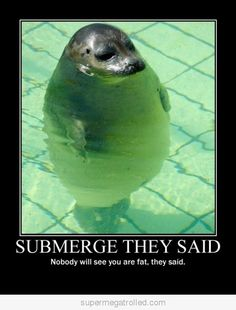 Haha, too funny. Submerge they said. Nobody will see you are fat, they said.