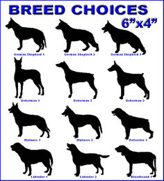 42 Best Police And Military Dog Products Ideas Military Working Dogs Police K9 Working Dogs