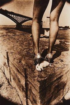 Leslie Robert Krims (dit Les Krims). Hommage to the Crosstar Filter Photograph  1971