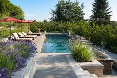 Poolside with a View | Eckford Tyacke + Associates
