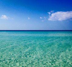 Southern Belle Simple : Fun in the Sun - A Beach Getaway to Sandestin