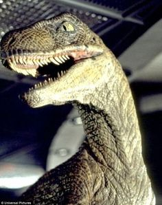 Old villains: In the earlier Jurassic Park movies, raptors were the scariest dinosaurs aro...