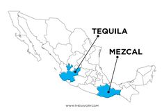 Mescal is typically from Oaxaca, tequila is typically from Jalisco.