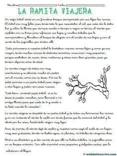 comprension- lectora-para-tercero-de-primaria Spanish Classroom, Teaching Spanish, Classroom Humor, Learn To Speak Spanish, Learning Sight Words, The Learning Experience, Teaching Schools, Bilingual Education, Learning Quotes