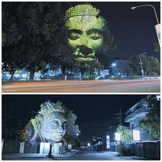 Cambodian Trees is a digital projection work by French artist Clement Briend