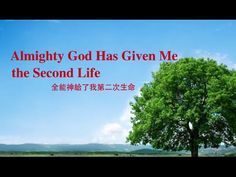 "[The Church of Almighty God] Micro Film ""Almighty God Has Given Me the S..."