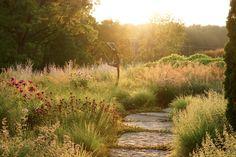 Flagstone path through high summer perennials and grasses in Girard, Illinois. Designed by Adam Woodruff + Associates, Clayton, MO. Love his work. Landscape Architecture, Landscape Design, Garden Design, Meadow Garden, Dream Garden, Garden Paths, Garden Landscaping, Natural Garden, Ornamental Grasses